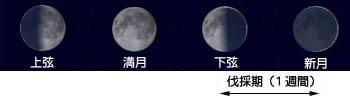 shingetsu01.jpg