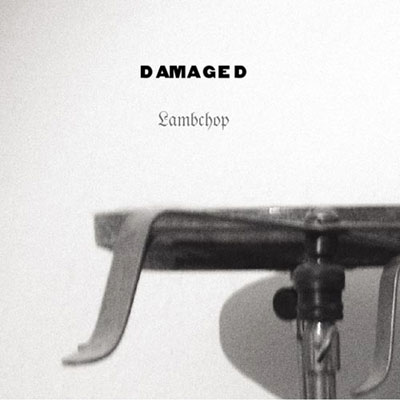 Damaged-Lambchop_480.jpg