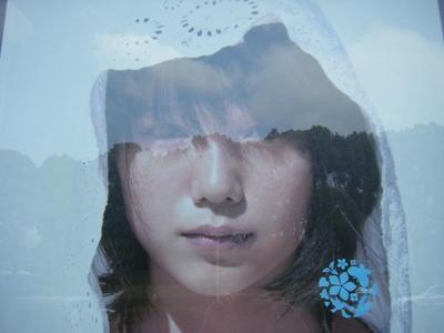 miyazakiaoi1.JPG
