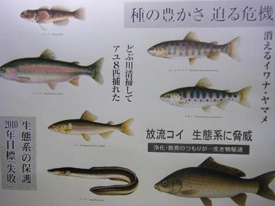 2010_08290116-6.JPG