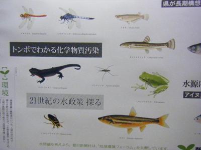 2010_08290117-7.JPG