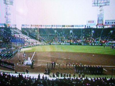 2011_03290012koushien.JPG