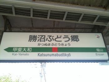 ぶどう郷駅.jpg