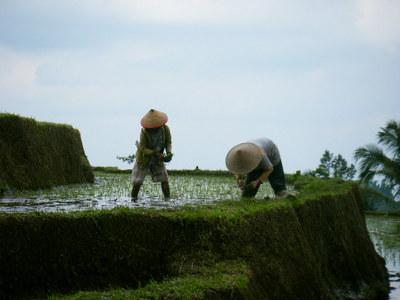 indonesia-people-2.JPG